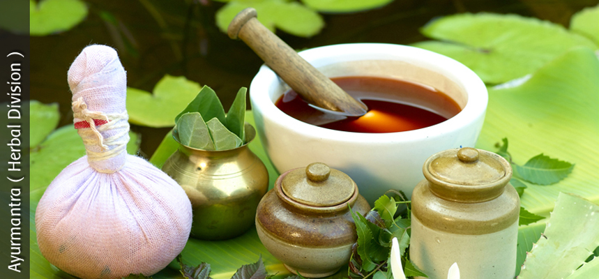 ayurvedic and herbal medicines companies in chandigarh